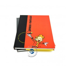China Custom Hardcover Comic Book Printing Company Services